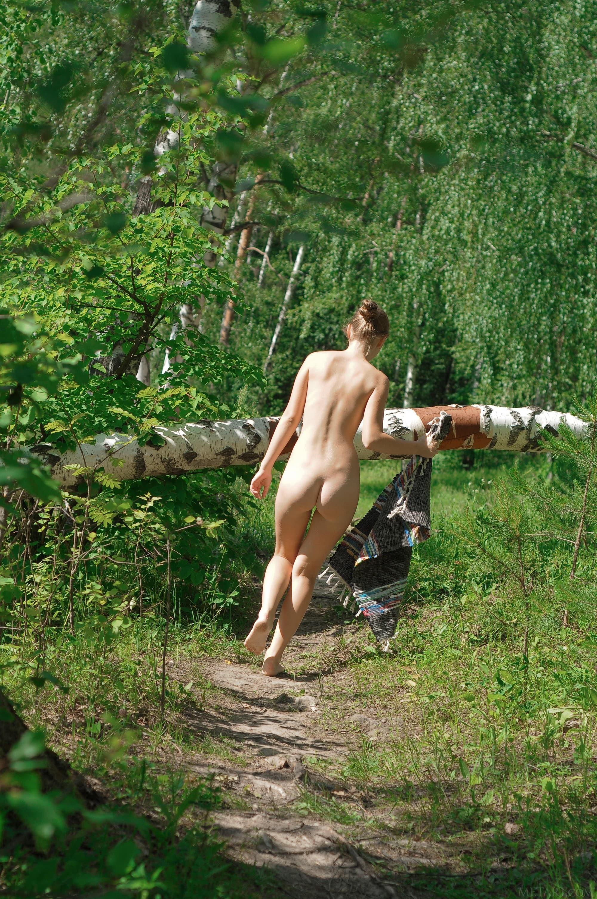 Голая деревенская дама в лесу на дереве - фото